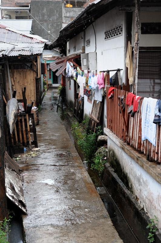 Столица северного Сулавеси — город Манадо. Место не лишенное колорита, хотя и не выделяющееся какими-либо достопримечательностями. Из туристов сюда стремятся лишь дайверы, привлеченные возможностью найти живое ископаемое — целаканта.