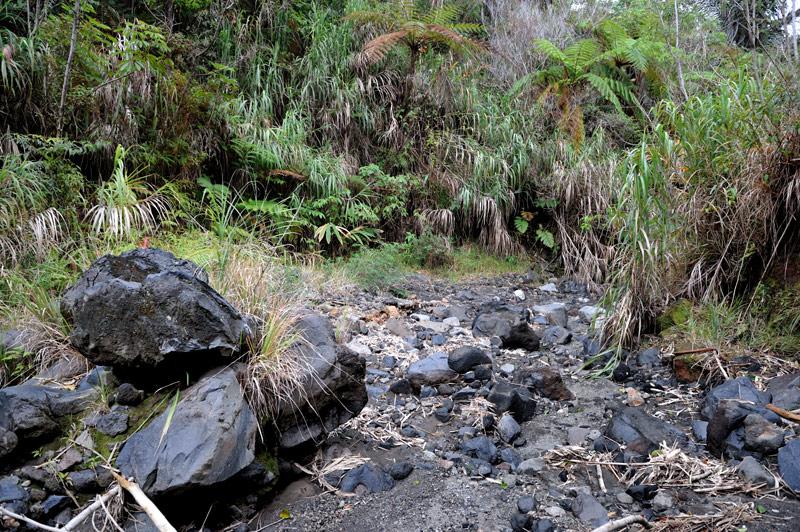Дорога хаотично украшена вулканическими бомбами и прочими добряками, периодически выплевываемыми из земных недр.