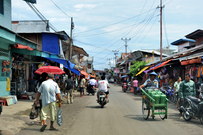 В большей мере интерес представляют различные небольшие городки и деревни, беспорядочно нанизанные на нитки индонезийских дорог.